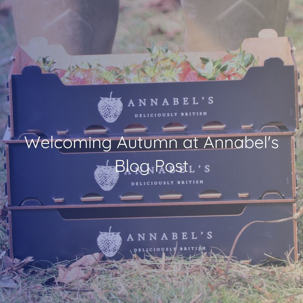 Welcoming Autumn at Annabel's