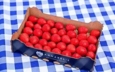 Summertime strawberries – Annabel's Blog