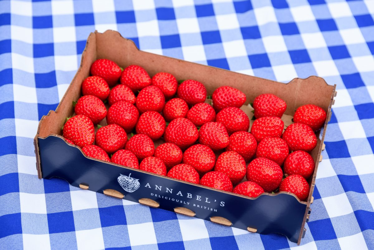 Annabel's tray of strawberries on a table cloth