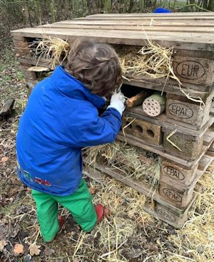 A boy playing with a bug hotel outdoors